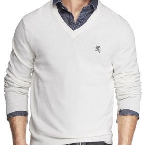 Express Men's Small Lion Cotton V-Neck Sweater